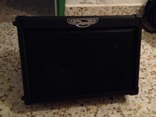 o cambio amplificador inalambrico Traynor tvm50