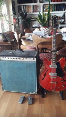 Amplificador Park 25W vintage!
