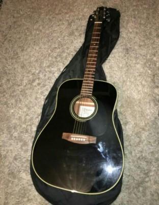 Cambio Guitarra acústica Takamine G Series 321