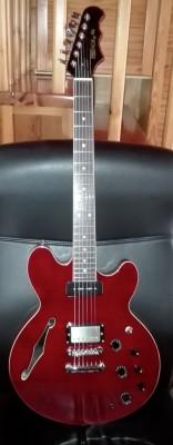 Guitarra Electrica FRET KING modelo Gordon Giltrap