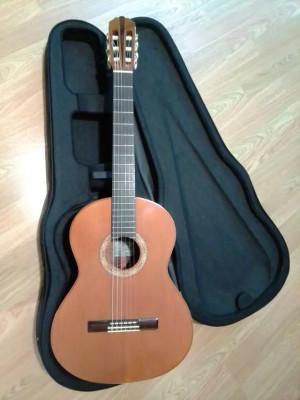 Alvarez Yairy - Guitarra Clásica Electrificada