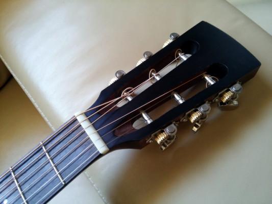 Guitarra acústica Ibanez AVN9