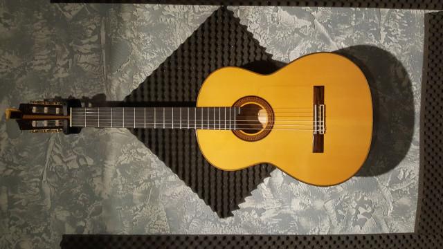 Guitarra amplificada Hermanos Martínez Ciprés mfg-cs