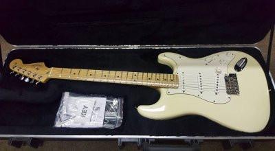 /Vendo Fender Stratocaster USA por Jazzmaster am vintage o am pro