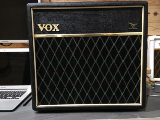 Pathfinder  15 Reverv Vox Amplificador Mod led Brian May