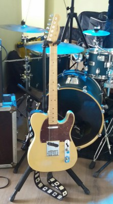 Fender Telecaster Standard Japan RESERVADA