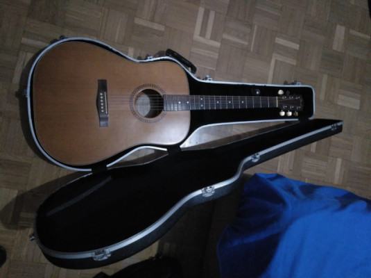 Guitarra Acústica Fender DG-25S NAT