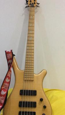 Warwick 5 cuerdas Edición Limitada