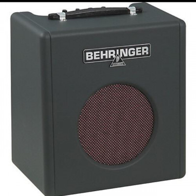 Amplificador de Bajo 15W Thunderbird BX108