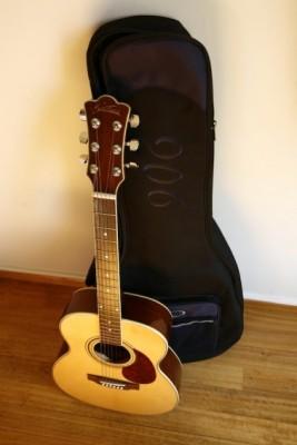 Guitarra acústica Sunstar