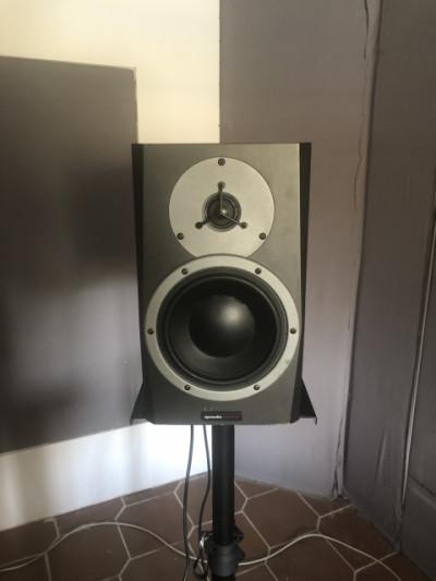 Monitores de estudio Dynaudio BM5A