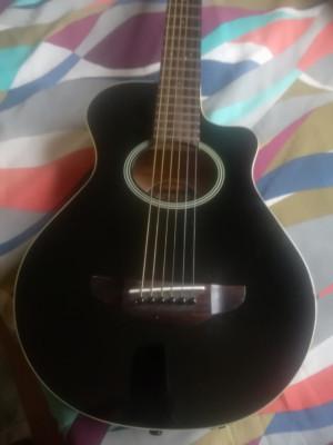 Guitarras para cambio