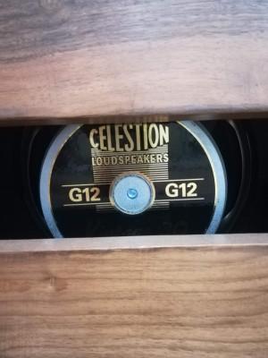 Vendo pantalla con Celestion V30