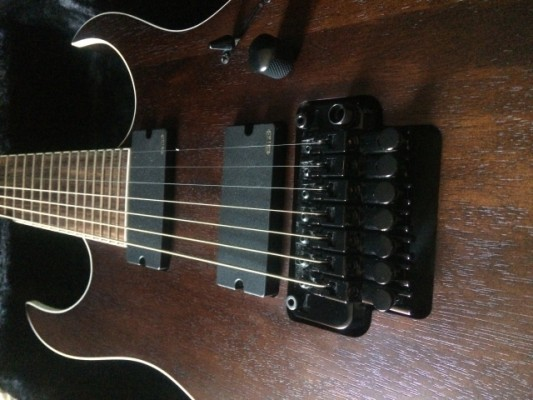 Ibanez RGIR27BE-WNF Iron label