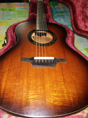 (O cambio) Guitarra Luis Guerrero Serie S