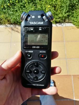 grabadora tascam dr-05