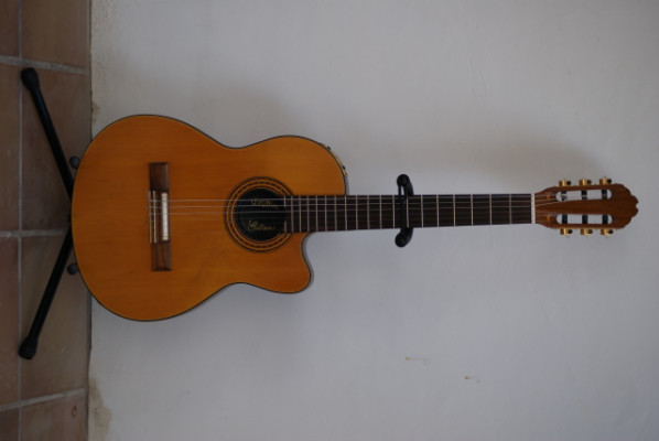Vendo: Gibson Chet Atkins (Nylon Strings)