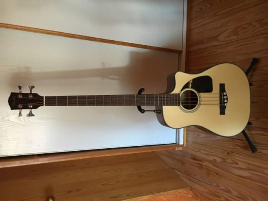 Fender Cb 100
