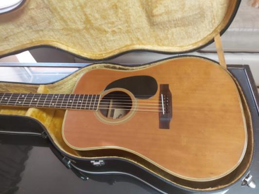 Acústica Tokai TW250 de 1974
