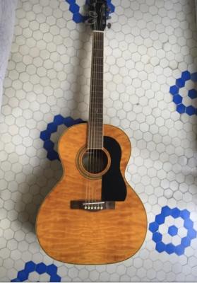 Guitarra Acústica Fender GDO 300