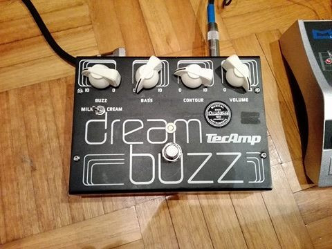TecAmp Dream Buzz