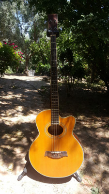 Tanglewood TW 55 Bajo Acustico Electrico
