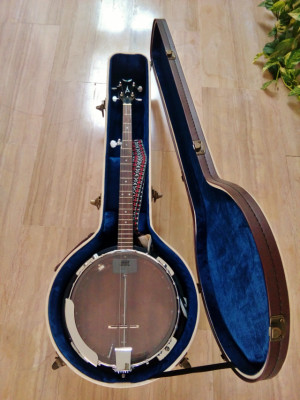 Banjo Dean Guitars Backwoods 2 Electric 5-String