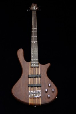 Washburn Taurus T24