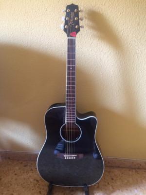 Cambio Guitarra  Electro Acústica Takamine G series