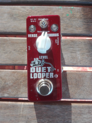 Duet looper xvive, Mooer micro preamp, Musket fuzz clone