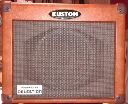 Amplificador guitarra acústica y pedal efectos