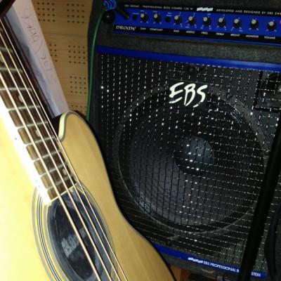 """Amplificador bajo EBS Drome 15"""" 150W"""