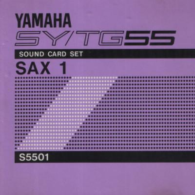 Yamaha SY/TG55 expansión SAX-1 & DRUMS-1