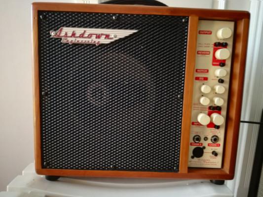 Amplificador acustico Ashdown Radiator AAR-1C-R