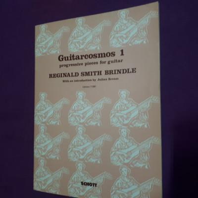 Guitarcosmos 1-Reginald Smith Brindle