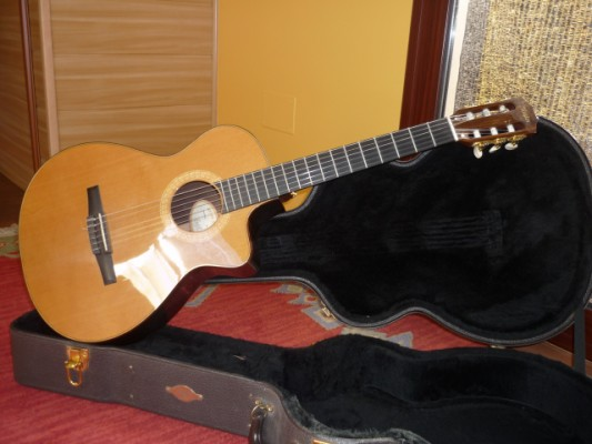 Taylor NS72-CE