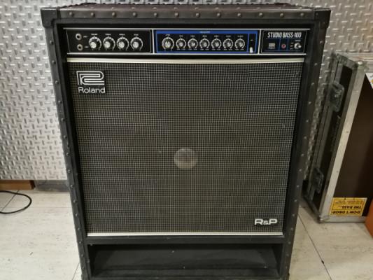 Roland Sb 100 Studio Bass