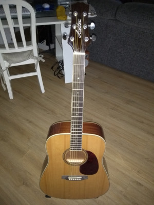 Guitarra Acústica Ashton SPD25 NT