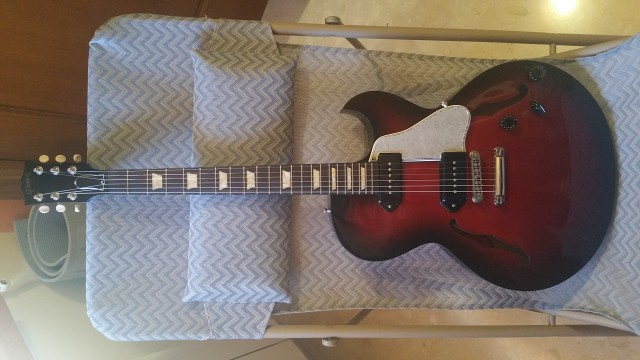 Gibson Es-137 Billie Joe Amstrong