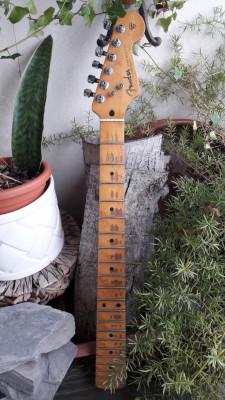 Màstil Warmoth para Stratocaster!!!
