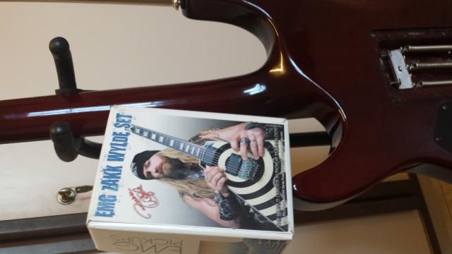 Vendo kit pastillas guitarra Zack Wilde