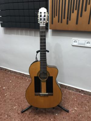 Guitarra Acústica - Takamine EG124C