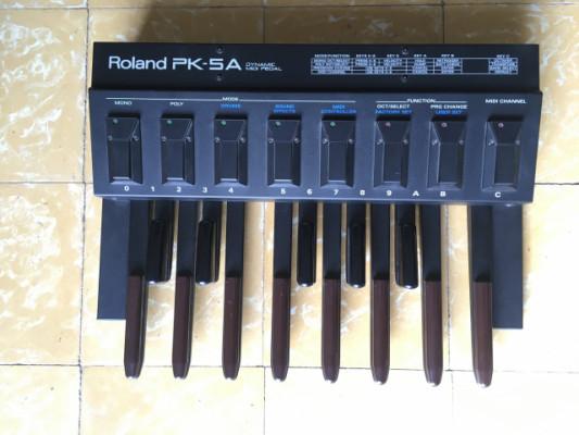 Roland PK 5A
