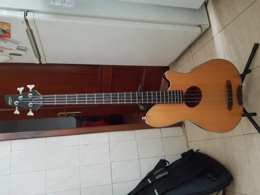 Bajo Acústio Ibanez Talman,no Fender,Yamaha