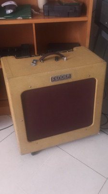 BASSMAN TV FIFTEEN 350Watios