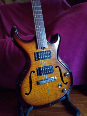 Gadow Jazz Guitar [Busco bajo fretless de 5 cuerdas]