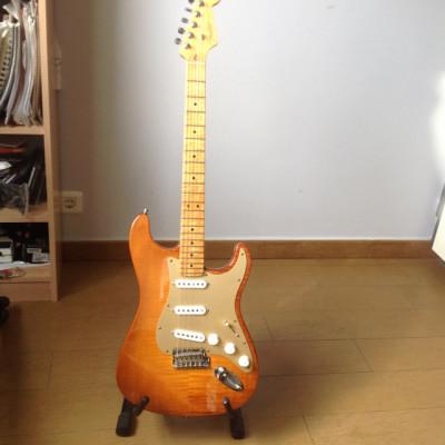 Fender select custom 2012 (rebaja temporal)