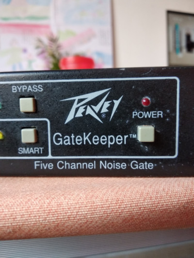 "puerta de ruido Peavey ""GateKeeper"" USA de 5 canales"