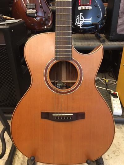 Acústica Lakewood M-14 CP
