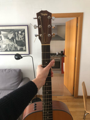 Taylor Guitars 114e + funda